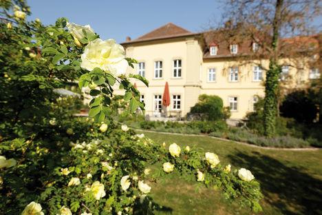 Rosen und Gebäude